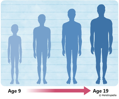 illustration of growth in height during puberty in boys from age 9 to age 19 - Menstrupedia